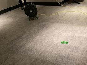 Vast-tapijt-reinigen