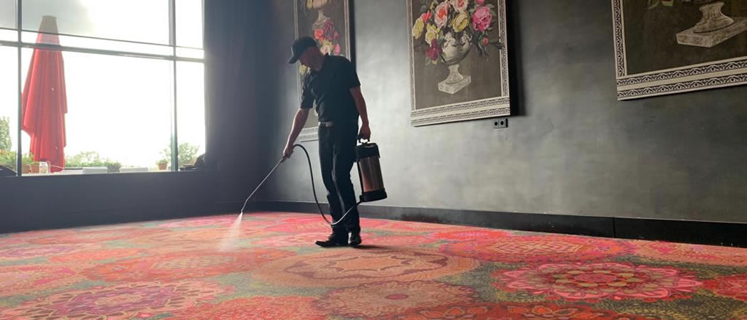 Hotel Carpet Cleaner